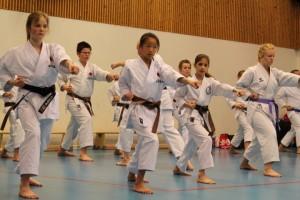 Trening med FjellKK.26.april 2015